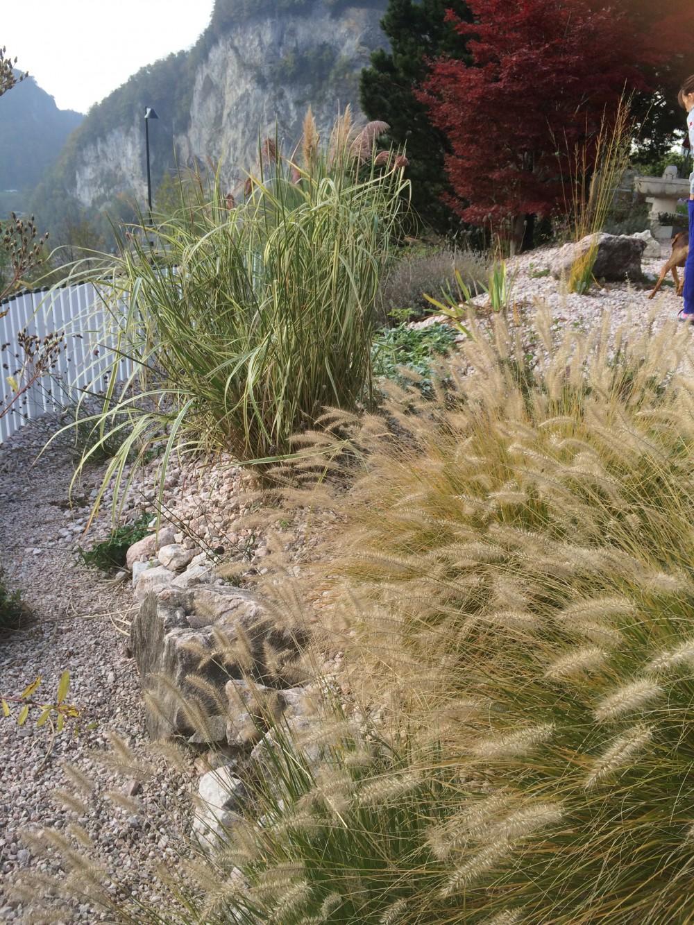 Garten W, Kobelwald 2012
