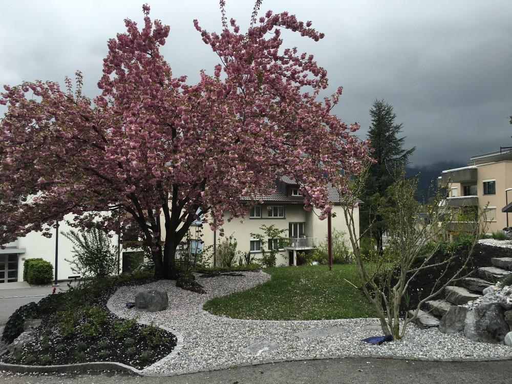 Garten K, Vaduz 2015