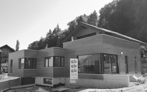 Anbau Einfamilienhaus, Schellenberg 2018